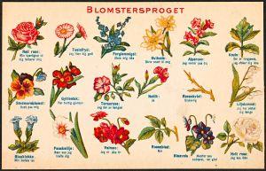 Affiche du langage des fleurs en danois Crédit : Nasjonalbiblioteket