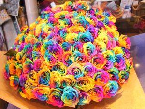dbb66747ceb Langage des fleurs   Signification de la rose et de ses couleurs