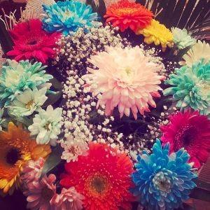 autres fleurs A - H